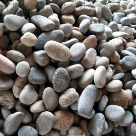 3-5公分天然鹅卵石报价 电厂变压器鹅卵石图片