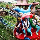 童星遊樂廠家推出新型遊樂設備衝浪旋艇歡迎訂購