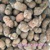 本格供应陶粒滤料 生物陶粒 页岩陶粒 轻质陶粒