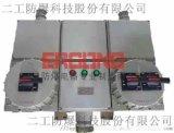 可燃性粉塵環境防爆配電箱檢修箱