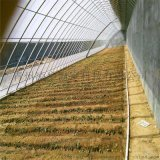 温室厂家 日光温室大棚 温室骨架