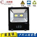 AE照明AE-TGD-02大功率戶外射燈,大功率射燈,戶外50W 100W150W