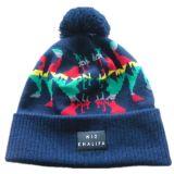 外贸出口韩版针织帽