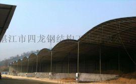 海南广西广东四龙钢构大型厂房生产商