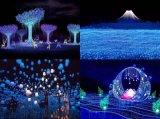 梦幻灯光节户外景观灯定制动态造型灯