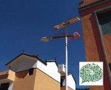 北京朝陽/海澱/豐臺/房山6米30瓦太陽能路燈廠家/太陽能路燈價格/