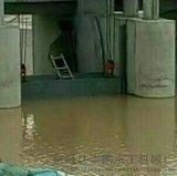 泵站鋼製閘門/弧形鋼閘門/匠心之作品質保障