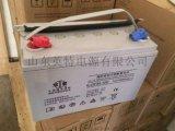 双登蓄电池12V100AH 6-GFM-100AH