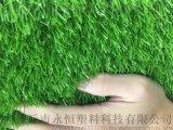 河北永恒铺设人造草坪