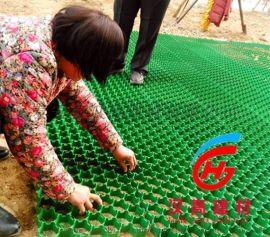 山东汉  50塑料植草格 厂家直销