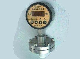数字压力控制表 (BD-801K)