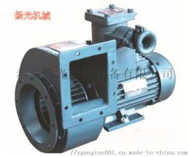 轮船CBZ-30AII电瓶间轴流防爆风机
