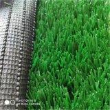 河北模擬草坪   人造草坪
