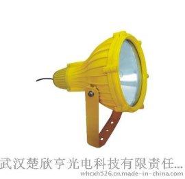 防爆型投光燈 BTC8210防爆投光燈 電廠投光燈 BTC8210圖片 BTC8210價格
