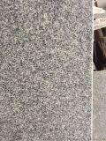 山西黑, 蒙古黑英國棕, 深圳石材,楓葉紅石材