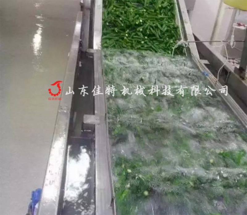 可加工定做的蔬菜清洗機, 淨菜加工專用清洗設備