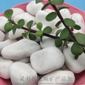 天津滨海直销永顺铺路装饰用机制抛光白色鹅卵石
