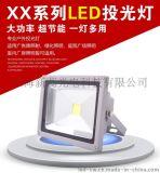 上海厂家供应外贸用10WLED正白/全彩投光灯