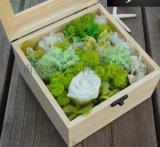 永生花保鲜花创意礼盒 圣诞情人节礼物送女友送老婆 一生一世
