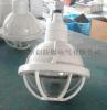 防爆防腐燈 BGL-200S增安型防爆防腐燈