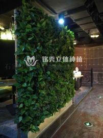 立體植物牆