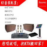 深圳市声准达科技有限公司专业音响供应各种KTV/酒吧/会议室/演出场合的音频设备15920041023