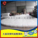 氨法脱硫用SB-125Y/SB-250Y波纹板填料
