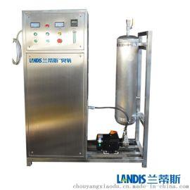 氧气型高浓度臭氧水发生器 高浓度臭氧水机
