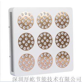 深圳LED植物灯多肉植物补光400W红蓝大棚灯