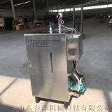廠家直銷環保蒸汽發生器 商用蒸汽發生器