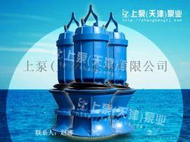 带保护装置的潜水轴(混)流泵