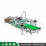 双工序排钻板式生产线 板式家具生产线自动上下料