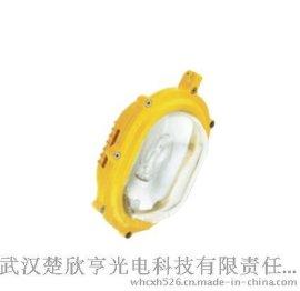 BFE8120内场强光防爆应急泛光灯 海洋王BFE8120 BFE8120价格
