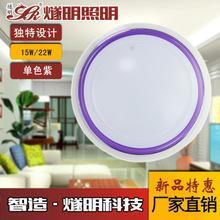 燧明LED吸顶灯LED室内百合款紫边天花吸顶灯15W22W 家居照明