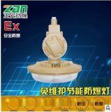 防爆無極燈BD1106-YQL65免維護節能防爆燈