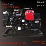 20千瓦柴油發電機組 精品20KW全銅備用發電機