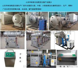 东营小型臭氧发生器公司【华林臭氧】