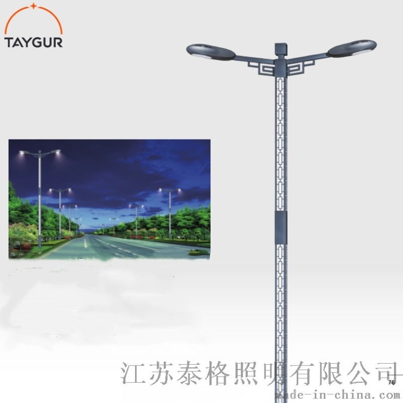 泰格LED照明,热镀锌路灯杆,8米新农村道路灯