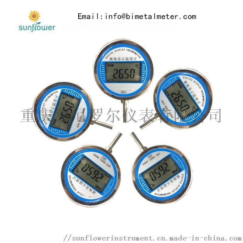 pt100热电阻热电偶就地显示数字温度计
