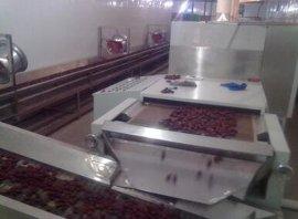 大红枣烘干机生产线|山东微波红枣烘干机新疆**