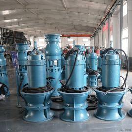 QZB潜水轴流泵_水设施用水泵_天津