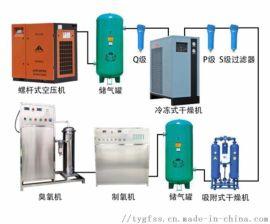 大型工业臭氧消毒器、大型水冷式臭氧发生器