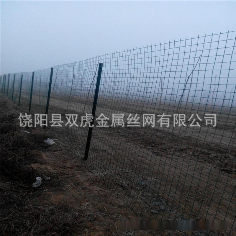 园林防护铁丝网 养鸡养鸭隔离网 绿胶皮铁丝网围栏
