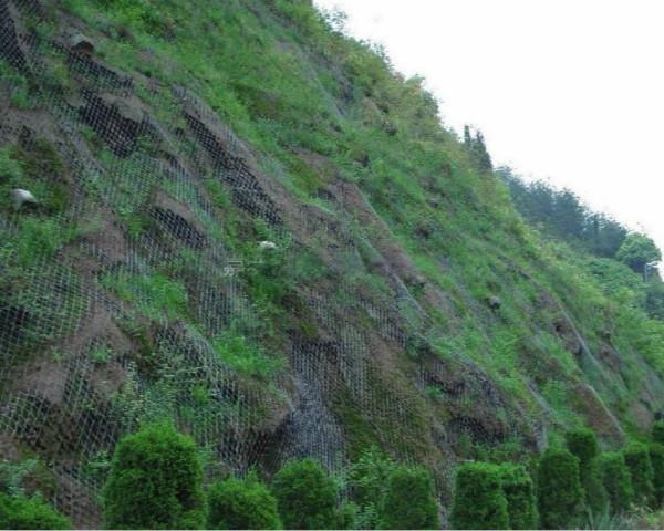 菱形防护网,包山钢丝网,柔性防护网,拦石钢丝网