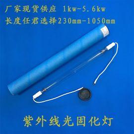 蓝盾高压水银uv固化灯 功率1000w-5.6kw 进口uv灯