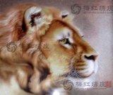 梅红绣庄-狮