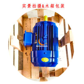 厂家热销TY FTY TYBZ系列三相永磁同步电机