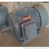 YZTD225M2-4/8/32塔式起重用多速電機