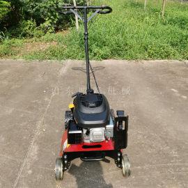 农场除草小型割草机,手推式自走割草机