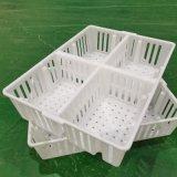 塑料四格鸡苗箱雏鸡周转箱雏鸡运输箱